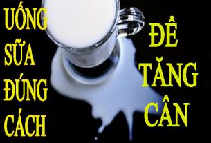 cách uống sữa tăng cân hiệu quả