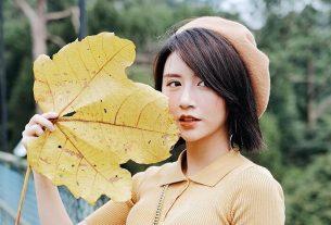 tiểu sử Quỳnh Anh Shyn