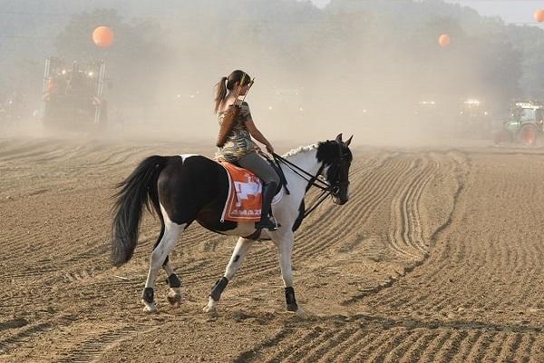 mơ thấy ngựa thường là may mắn