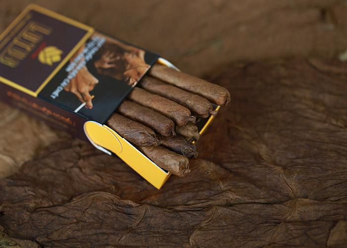 Thế giới xì gà Cuba - Nơi cung cấp xì gà chính hãng